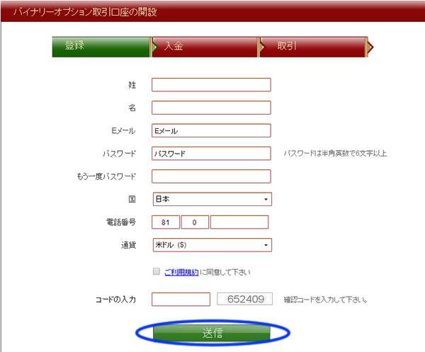 VIPオプションの口座開設詳細画像